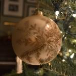 tree blog 7